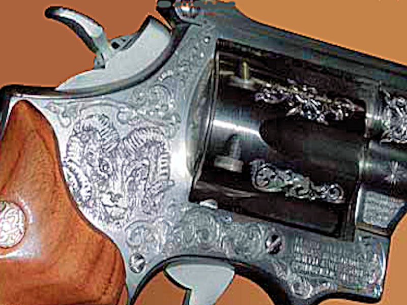 smith-wesson-10_new
